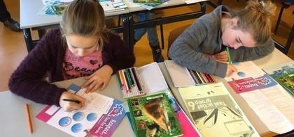 Werken aan lesbrief (gr. 6)
